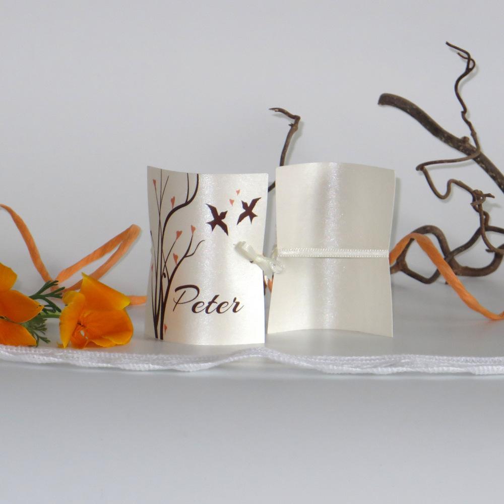 Süße Namenskarte mit netten Vögeln und Ästen in apricot und braun