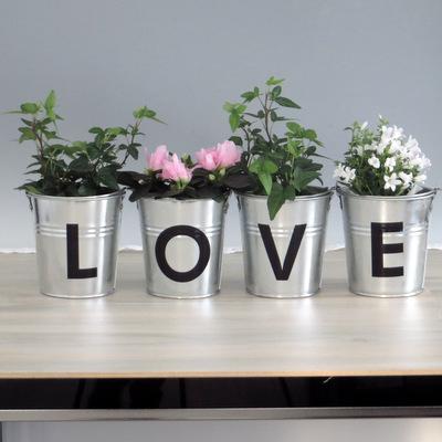 """Beschriftung """"Love"""""""